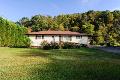 Maryville Single Family Home For Sale: 633 Butler Mill Rd