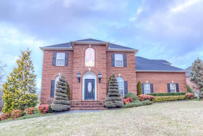 Maryville Single Family Home For Sale: 3014 Spyglass Drive