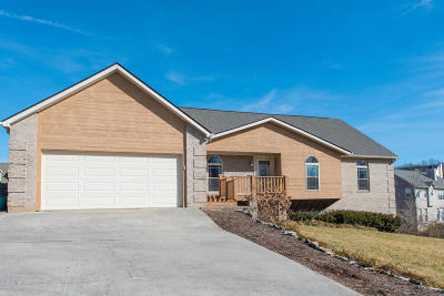 Knoxville Single Family Home For Sale: 3606 Broken Wing Rd