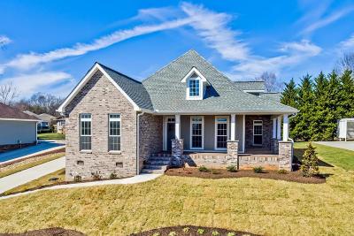 Single Family Home For Sale: 130 Saligugi Way