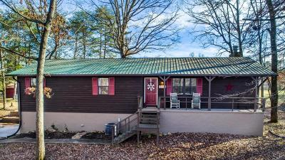 Knoxville Single Family Home For Sale: 322 Widow Newman Lane