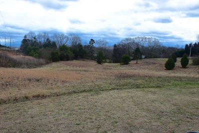 Sevierville Residential Lots & Land For Sale: McKinney Drive