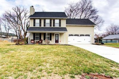 Knoxville Single Family Home For Sale: 1625 Carrie Belle Drive