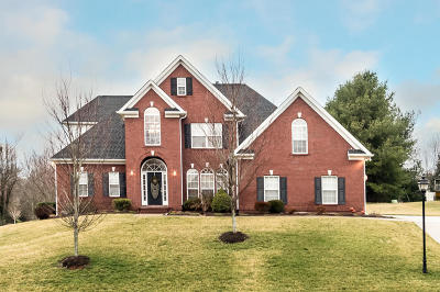 Knoxville Single Family Home For Sale: 306 Windham Hill Rd