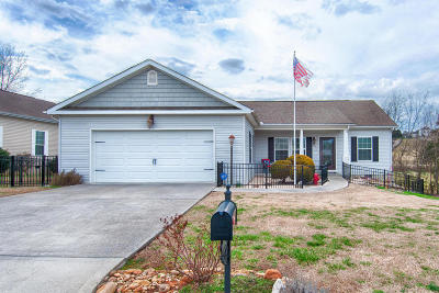 Sevierville Single Family Home For Sale: 1116 Gregory Valley Drive