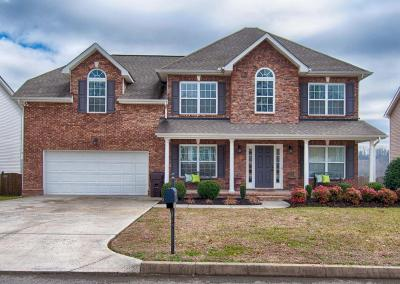 Knoxville Single Family Home For Sale: 7432 Sparkle Lane