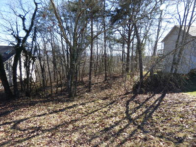 Fairfield Glade Residential Lots & Land For Sale: 354 Snead Drive