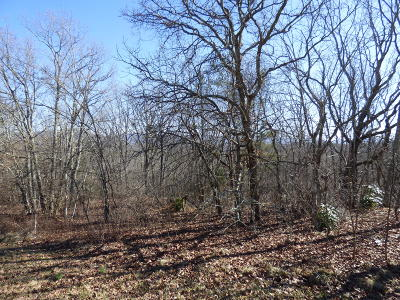 Fairfield Glade Residential Lots & Land For Sale: 358 Snead Drive