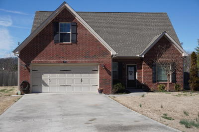 Knoxville Single Family Home For Sale: 8564 Reagan Woods Lane