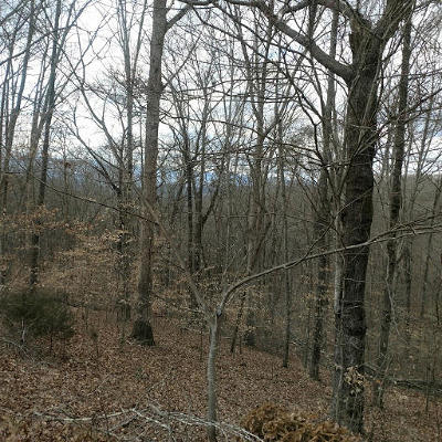 Norris Residential Lots & Land For Sale: 36 Hawthorne