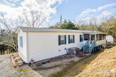 Sevierville Single Family Home For Sale: 1009 Pleasure Rd
