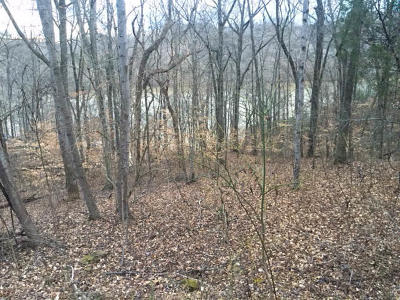 Anderson County, Campbell County, Claiborne County, Grainger County, Union County Residential Lots & Land For Sale: Norris Shores Drive