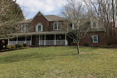 Knoxville Single Family Home For Sale: 9936 Delle Meade Drive