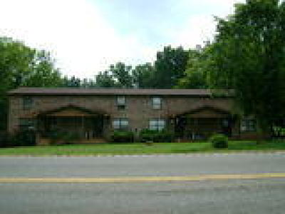 Seymour Multi Family Home For Sale: 207 Boyds Creek Hwy