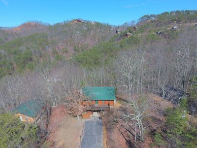Sevierville Single Family Home For Sale: 3045 Engle Town Rd