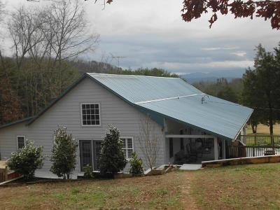 Tellico Plains Single Family Home For Sale: 1187 Reagan Valley Rd