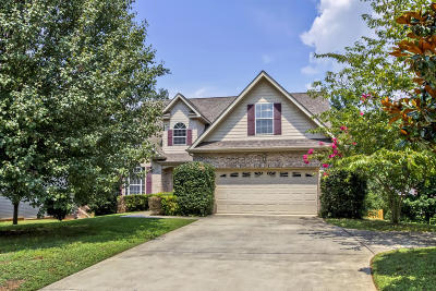 Knoxville Single Family Home For Sale: 9435 Twin Branch Drive