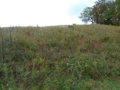 Sevierville Residential Lots & Land For Sale: Lot 2 Rule Way