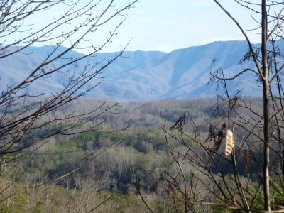 Sevierville Residential Lots & Land For Sale: Lt. 7 Mountain Boulevard