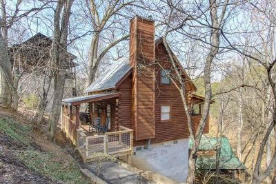 Sevierville Single Family Home For Sale: 2116 Silver Way