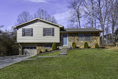 Knoxville TN Single Family Home For Sale: $174,950