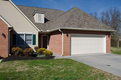 Sevierville Condo/Townhouse For Sale: 382 Paine Lake Drive