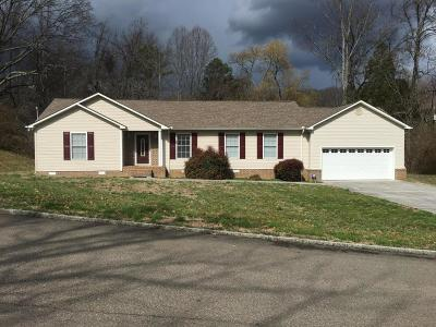 Knoxville Single Family Home For Sale: 4525 Foothills Drive