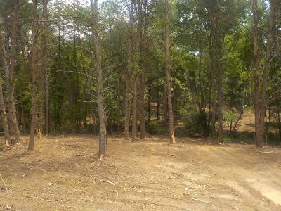 Blaine Residential Lots & Land For Sale: 5.67 Acres Old Rutledge Pike