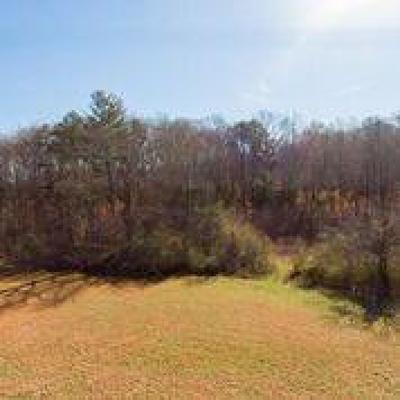 Residential Lots & Land For Sale: 1249 Blockhouse Valley Rd