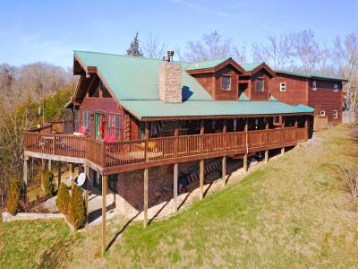 Dandridge Single Family Home For Sale: 2072 Paradise Hills Rd