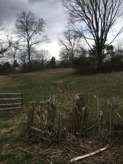 Powell Residential Lots & Land For Sale: 9926 Andersonville Pike