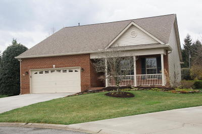 Knoxville Single Family Home For Sale: 11536 Fincastle Lane