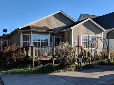 Lenoir City Single Family Home For Sale: 1226 Harrison Ave