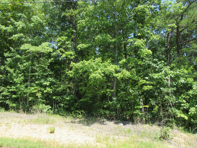 Rocky Top Residential Lots & Land For Sale: Lake City Hwy