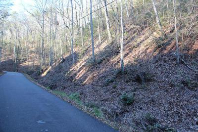 Gatlinburg Residential Lots & Land For Sale: 768 Hidden Valley Rd