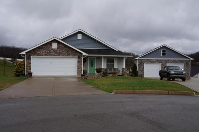 Bean Station Single Family Home For Sale: 274 Drew Drive