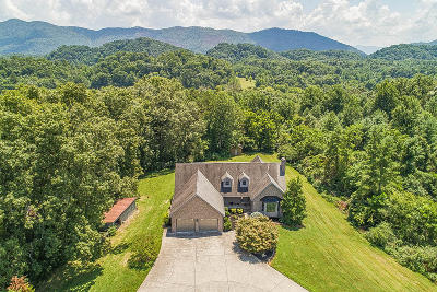 Walland Single Family Home For Sale: 976 Country Lane