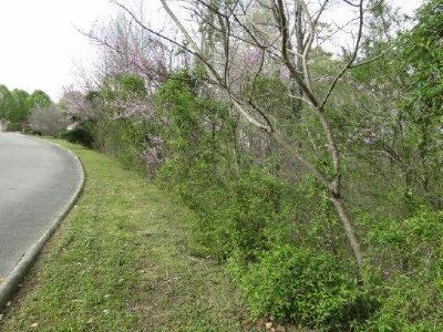 Oak Ridge Residential Lots & Land For Sale: 103 Wildcat Lane