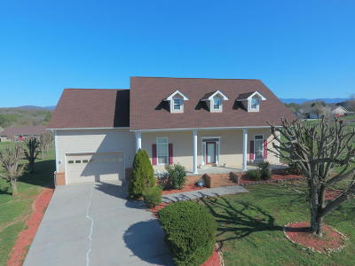 Sevierville Single Family Home For Sale: 1833 Edward Drive