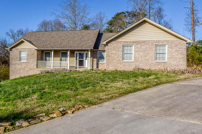 Maryville Single Family Home For Sale: 120 Pearson Springs Park Lane