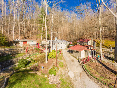 Maynardville Single Family Home For Sale: 155 Summers Rd
