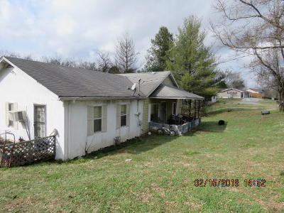 Blount County, Loudon County, Monroe County Single Family Home For Sale: 311 Harrison Bend Rd