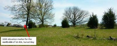 Residential Lots & Land For Sale: Lot 454 Reginas Point