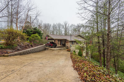 Sevier County Single Family Home For Sale: 1713 Cardinal Drive