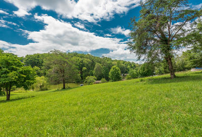 Loudon County, Monroe County Residential Lots & Land For Sale: 315 Conkinnon Drive