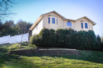Kodak Single Family Home For Sale: 4059 Snyder Rd
