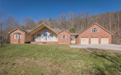 Jacksboro Single Family Home For Sale: 797 Twin Hills Lane