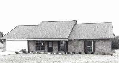 Maryville Single Family Home For Sale: 3305 Clover Hill Ridge Rd