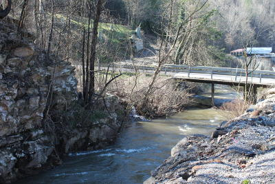 Gatlinburg Residential Lots & Land For Sale: 219 Newman Rd