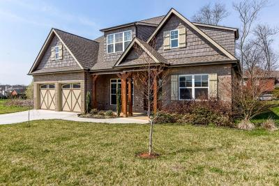 Maryville Single Family Home For Sale: 519 Karch Drive